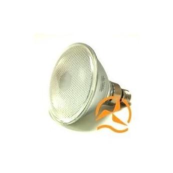 Ampoule spot PAR38 70 LEDs 12 Volts culot E27 éclairage blanc