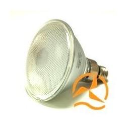Ampoule spot PAR38 120 LEDs 12 Volts culot E27 éclairage blanc