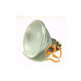Ampoule spot PAR38 70 LEDs 220 Volts culot E27 éclairage blanc