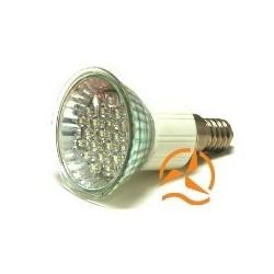 Lot de 5 ampoules spots 21 LEDs 220 Volts culot E14 éclairage blanc