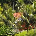 Energiedouce - Site isolé photovoltaïque Martinique 2